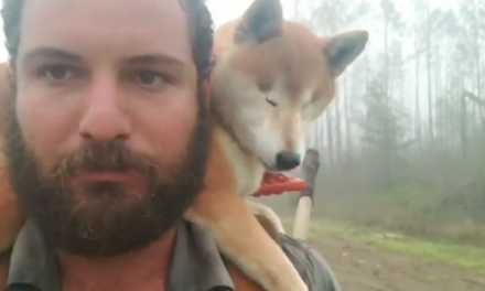 His dog went blind, but that didn't stop him from finishing a 1,100-mile hike with her